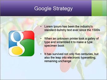 0000071799 PowerPoint Template - Slide 10