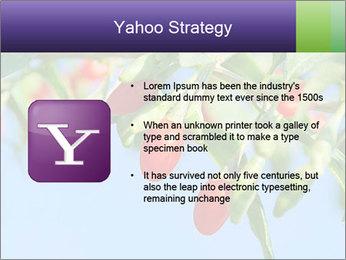 0000071799 PowerPoint Template - Slide 11