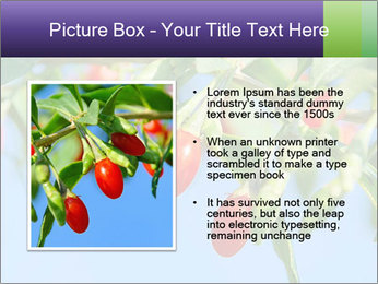 0000071799 PowerPoint Template - Slide 13