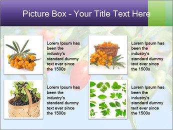 0000071799 PowerPoint Template - Slide 14