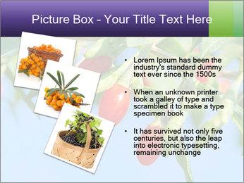 0000071799 PowerPoint Template - Slide 17