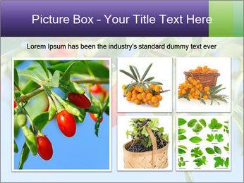 0000071799 PowerPoint Template - Slide 19