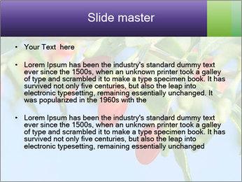 0000071799 PowerPoint Template - Slide 2