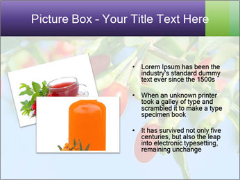 0000071799 PowerPoint Template - Slide 20