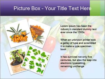 0000071799 PowerPoint Template - Slide 23