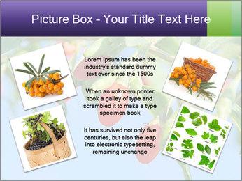 0000071799 PowerPoint Template - Slide 24