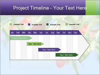 0000071799 PowerPoint Template - Slide 25
