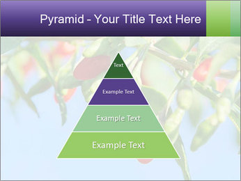 0000071799 PowerPoint Template - Slide 30