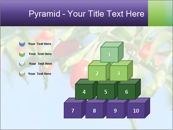 0000071799 PowerPoint Template - Slide 31