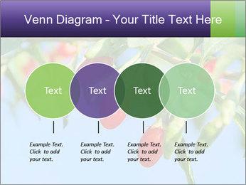 0000071799 PowerPoint Template - Slide 32