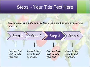 0000071799 PowerPoint Template - Slide 4