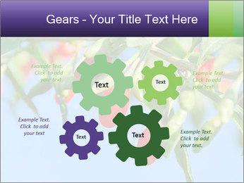 0000071799 PowerPoint Template - Slide 47