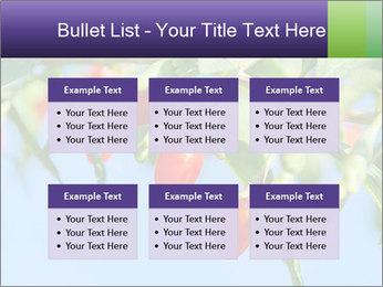 0000071799 PowerPoint Template - Slide 56
