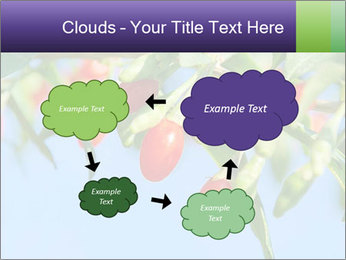 0000071799 PowerPoint Template - Slide 72