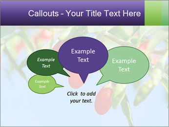 0000071799 PowerPoint Template - Slide 73