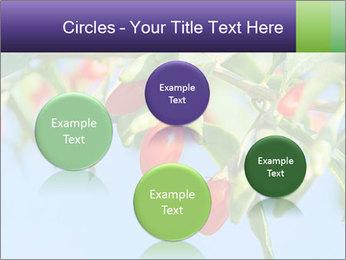 0000071799 PowerPoint Template - Slide 77
