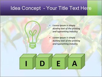0000071799 PowerPoint Template - Slide 80