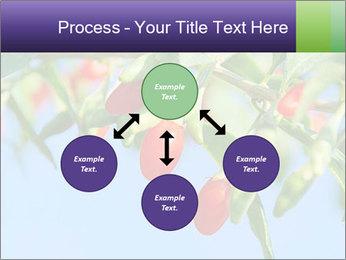 0000071799 PowerPoint Template - Slide 91