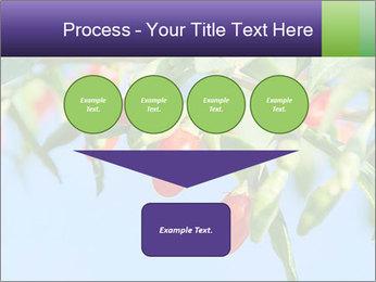 0000071799 PowerPoint Template - Slide 93