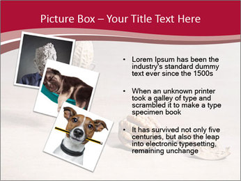 0000071810 PowerPoint Templates - Slide 17