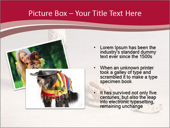0000071810 PowerPoint Template - Slide 20