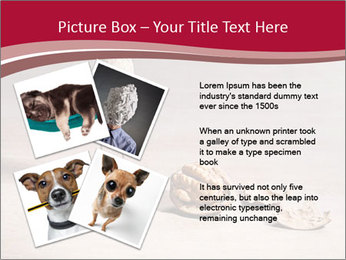 0000071810 PowerPoint Template - Slide 23