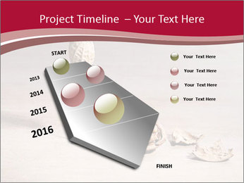 0000071810 PowerPoint Template - Slide 26