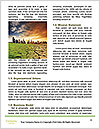 0000071822 Word Templates - Page 4
