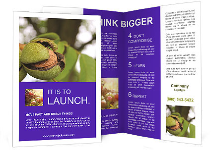 0000071826 Brochure Template