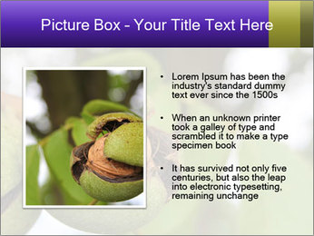 0000071826 PowerPoint Template - Slide 13