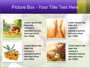 0000071826 PowerPoint Template - Slide 14