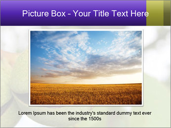 0000071826 PowerPoint Template - Slide 15