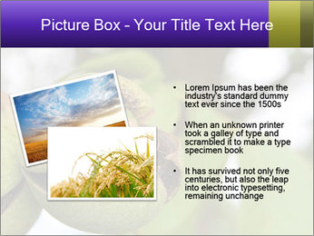 0000071826 PowerPoint Template - Slide 20