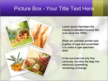 0000071826 PowerPoint Template - Slide 23