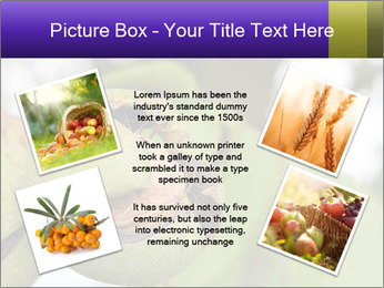 0000071826 PowerPoint Template - Slide 24