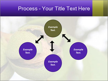 0000071826 PowerPoint Template - Slide 91