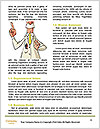0000071833 Word Templates - Page 4