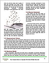 0000071835 Word Template - Page 4