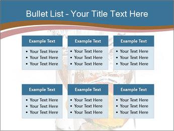 0000071843 PowerPoint Templates - Slide 56