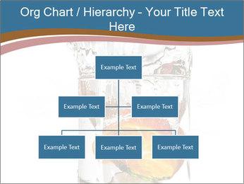 0000071843 PowerPoint Templates - Slide 66