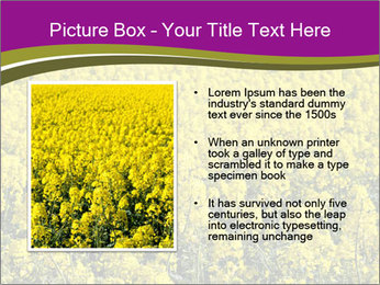 0000071844 PowerPoint Templates - Slide 13