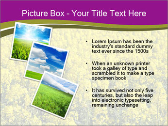0000071844 PowerPoint Templates - Slide 17