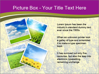 0000071844 PowerPoint Templates - Slide 23