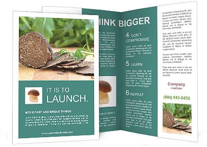 0000071850 Brochure Template