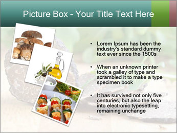 0000071850 PowerPoint Template - Slide 17
