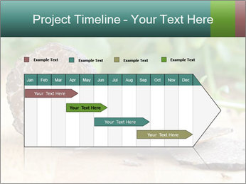 0000071850 PowerPoint Template - Slide 25