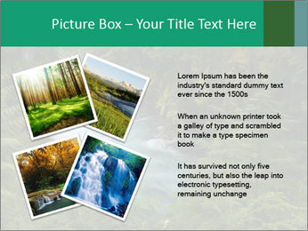 0000071852 PowerPoint Template - Slide 23