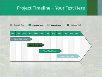 0000071852 PowerPoint Template - Slide 25