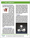 0000071856 Word Template - Page 3