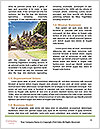 0000071871 Word Template - Page 4